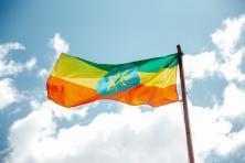 国家专题丨埃塞俄比亚 Ethiopia-客户特点-进口商